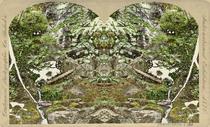 Steroscope4 4x6 cv