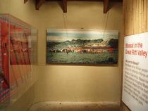Maasai2 cv