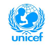 Unicef cv