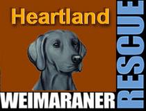 Heartland weimaraner rescue logo cv