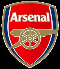 Arsenal cv