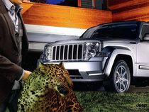 Extreme leopard cv
