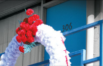 Wreath cv