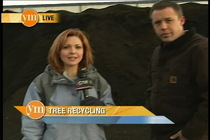 Jill tree recycle still cv