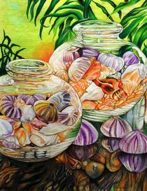 Shells cv