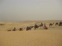 Egypt 040 cv