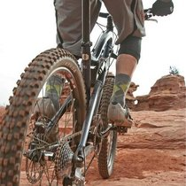 Mountain biking cv