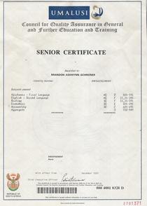 Senior cv