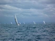 Sailing6 cv