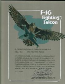 F16 1  cv