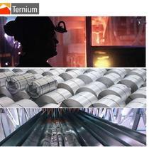 Ternium cv