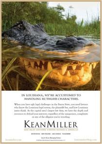 Alligator ad cv