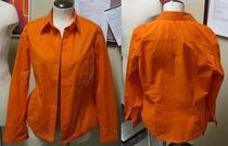 Shirt3a cv