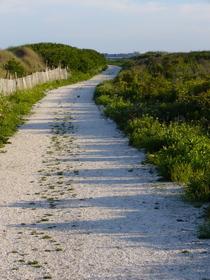 Beach road cv