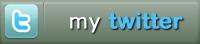 Btn twitter cv