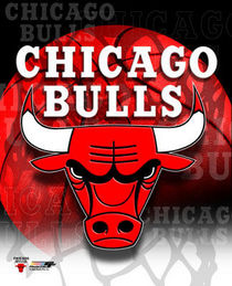 Bulls logo jpg cv