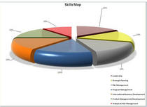Skills map 1 edited cv