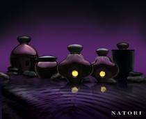 Natori lineup cv
