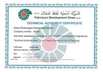 Technical authority 1 cv