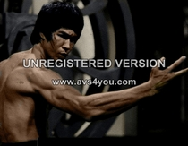 Bruce lee big picture cv