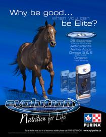 Be elite cv