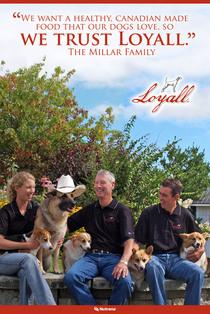 Millar family loyall poster cv