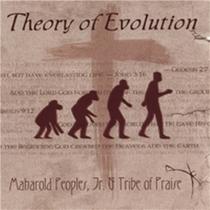 Theory cdcover cv