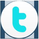 Twitter2 cv