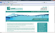 Lewis cleansing cv
