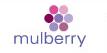 Mulberry cv