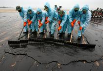 Oil spill cv