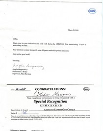 Roche 2008 award 2  cv