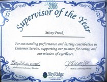 2006 supervisor of the year cv