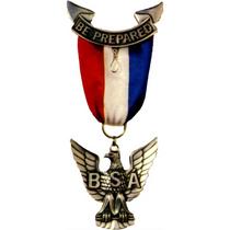 Eaglescout cv