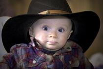 Cowboy brady cv