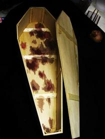 Plywood coffin cv