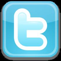 Twitter 256x256 cv
