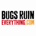 Bugs ruin everything video challenge cv