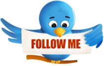Twitter bird cv