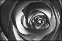 Spiralout  cv