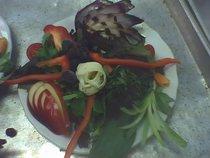 Salad 1 cv