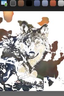 Wolf2 cv
