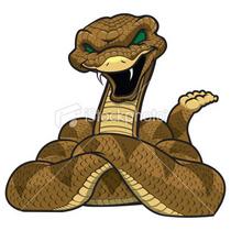 Ist2 7092963 rattlesnake mascot cv