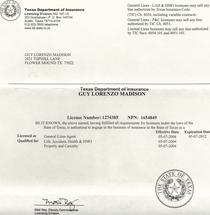 Texas insurance license  cv