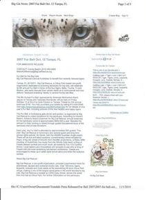 Big cat fur ball press release cv