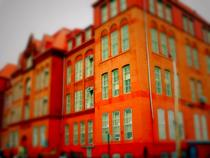 Greenpoint school justinfarrow cv