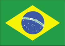 Brazil cv