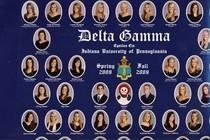Delta gamma composite cv