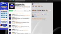 Springbak twitter cv