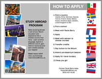 Student exchange flyer cv